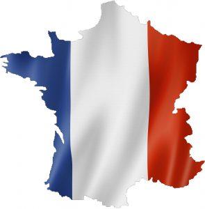 Utilingo: French translation services